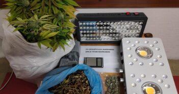 Συνελήφθη στη Ρόδο ημεδαπός για κατοχή και καλλιέργεια κάνναβης εσωτερικού τύπου