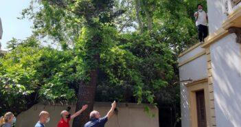 Ρόδος Άνδρας απειλεί να πέσει στο κενό από τον 1ο όροφο του Πρωτοδικείου Ρόδου