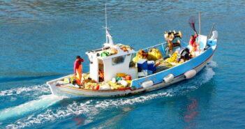 Συνεχίζονται οι αποζημιώσεις, λόγω Covid-19, από το επιχειρησιακό πρόγραμμα αλιείας