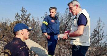 Χατζημάρκος Άμεση αυτοψία στις πληγείσες από τη φωτιά περιοχές της Ρόδου, από κλιμάκιο τεχνικών της Περιφέρειας