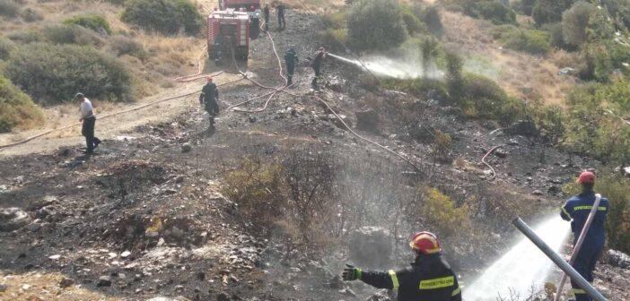Σε πλήρη έλεγχο τέθηκε η φωτιά που ξέσπασε στην περιοχή της Καλλιθέας