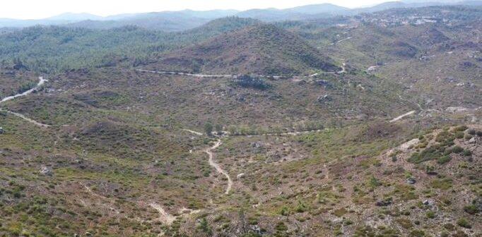 Οι μεγάλες επιχειρήσεις τουρισμού της Ρόδου αναλαμβάνουν τη 10ετή φροντίδα 2000 στρεμμάτων δάσους και καμένης δασικής έκτασης