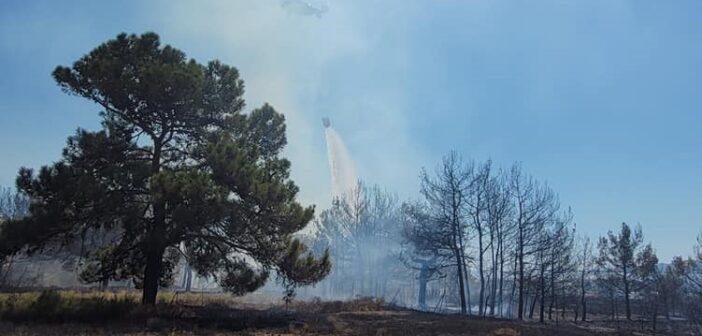 Οριοθετήθηκε η φωτιά στο Χαράκι
